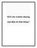 SEO cho website thương mại điện tử (bán hàng)?