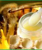 Sữa ong chúa gây dậy thì sớm