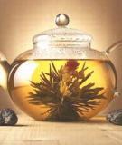 Trị đau đầu do ngoại cảm phong nhiệt bằng trà dược