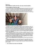 kỹ thuật nuôi chim yến thành công tại Việt Nam mới nhất