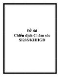 Đề tài Chiến dịch Chăm sóc SKSS/KHHGĐ