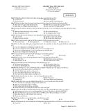 Tổng hợp đề kiểm tra 1 tiết môn Tin học lớp 10 năm 2012-2013 - Trường THPT Nguyễn Du