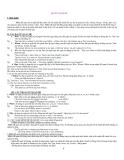 Bài tập đại từ quan hệ môn tiếng anh lớp 11