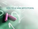 ĐỘC TỐ VI NẤM (MYCOTOXIN)