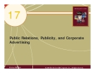 Chapter 17: Public Relations, Publicity, and Corporate Advertising