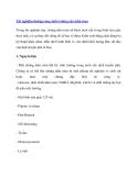 Thí nghiệm đường cong sinh trưởng của nấm men