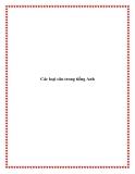 Tài liệu về Các loại câu trong tiếng Anh