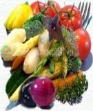 Thức ăn dinh dưỡng dành cho người cao tuổi