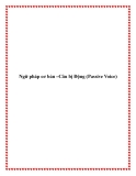 Ngữ pháp cơ bản –Câu bị Động (Passive Voice)