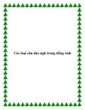 Các loại câu đảo ngữ trong tiếng Anh