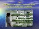 BÀI 6: Ứng dụng nuôi cấy mô tế bào trong nhân giống cây trồng nông, lâm nghiệp