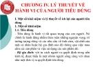 CHƯƠNG IV. LÝ THUYẾT VỀ HÀNH VI CỦA NGƯỜI TIÊU DÙNG