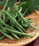 Những thực phẩm cho người gầy muốn tăng cân