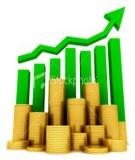 Hiệu quả sử dụng vốn đối với các doanh nghiệp trong nền kinh tế thị trường hiện nay
