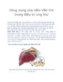 Công dụng của nấm Vân Chi trong điều trị ung thư