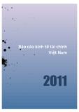 Báo cáo kinh tế tài chính Việt Nam 2011