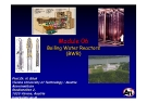 Module 06: Boiling Water Reactors