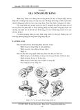 Giáo trình công nghệ chế tạo máy - Lưu Đức Bình 9