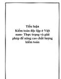 Tiểu luận Kiểm toán độc lập ở Việt nam- Thực trạng và giải pháp để nâng cao chất lượng kiểm toán