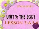 Bài giảng Tiếng Anh 6 unit 9: The body