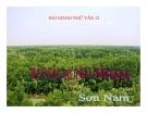 Bài giảng Ngữ văn 12 tuần 22 bài: Bắt sấu rừng U Minh Hạ - Sơn Nam