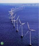 Việt Nam có tiềm năng phát triển năng lượng xanh trên biển