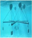 Tính thử khả năng phát điện của thủy điện chạy bằng năng lượng sóng biển khi dùng bơm piston