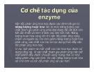 Cơ chế tác dụng của enzyme