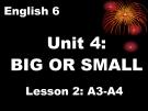 Bài giảng Tiếng Anh 6 unit 4: Big and small