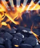 Luận văn: Đặc điểm phát triển địa chất của bể Cửu Long và tiềm năng dầu khí