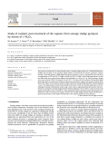 Study of catalytic post-treatment of the vapours from sewage sludge pyrolysis by means of c-Al2O3