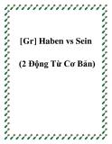[Gr] Haben vs Sein (2 Động Từ Cơ Bản)