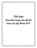 Tiểu luận Tìm hiểu bảng cân đối kế toán của tập Đoàn FPT