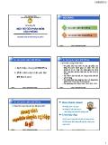 Bài giảng Tin học đại cương - Chương 4: Một số gói phần mềm văn phòng