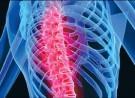 Cập nhật về chẩn đoán và điều trị bệnh loãng xương năm 2012