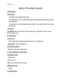 Vật lý 12- Chương 7 – Bài 38 phản ứng phân hạch