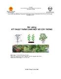 Bài giảng Kỹ thuật thâm canh một số cây trồng - TS. Bùi Thế Hùng