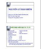 Bài giảng Nguyên lý Bảo hiểm - ThS. Nguyễn Thị Kim Liên