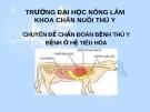 Chuyên đề chẩn đoán bệnh thú y bệnh ở hệ tiêu hóa - ĐH Nông Lâm
