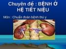 Chuyên đề: Bệnh ở hệ tiết niệu - Môn: Chẩn đoán bệnh thú y