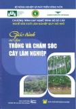 Giáo trình Trồng và chăm sóc cây lâm nghiệp - NXB Nông nghiệp