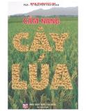 Ebook Cẩm nang cây lúa - Nguyễn Văn Hoan