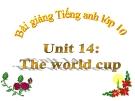 Bài giảng Tiếng Anh 10 unit 14: The World cup