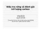 Điều tra rừng và đánh giá trữ lượng carbon - Hoàng Việt Anh