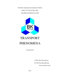 Tiểu luận:TRANSPORT PHENOMENA