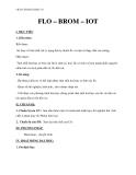 Giáo án Hóa học 10 bài 25: Flo – Brom – Iot  – GV.Phan Văn Hải