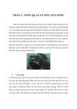 Báo cáo về Máy hàn sóng