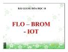 Bài giảng Hóa học 10 bài 25: Flo – Brom – Iot