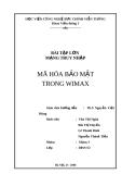 Đề tài: Mã hóa bảo mật trong wimax