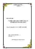 Tiểu luận: Chiến lược phát triển công ty cổ phần bê tông Becamex